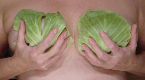 Cabbage leaves to relieve engorged breasts